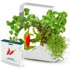 Tregren T6 Kitchen Garden aquaculture device, white and Jalopeno seed capsule
